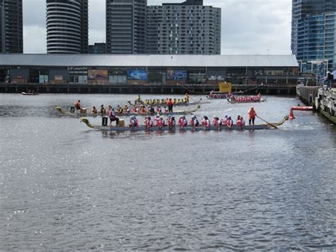 dragon boat racing graham miln - Dragon Boat Racing Docklands