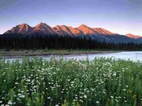 Search Bc Canada Rocky Mountains Kootenay National Park Columbia Canada Wallpaper