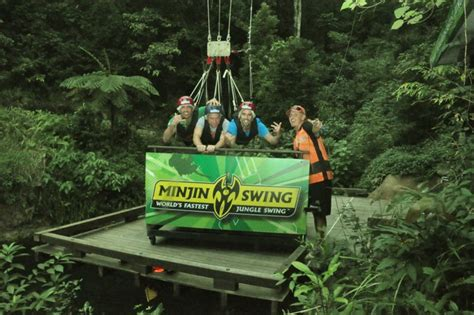 jungle swing minjin jungle swing adrenaline tour cairns aj hackett