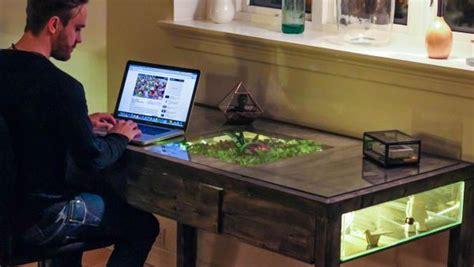 desk garden terrarium desk is workstation built in with small garden homecrux