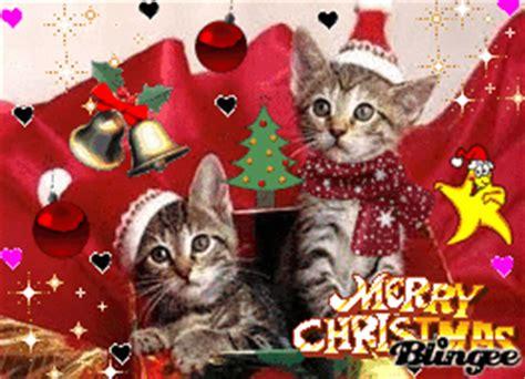 imagenes de feliz navidad con gatitos feliz navidad gatitos fotograf 237 a 119744630 blingee com