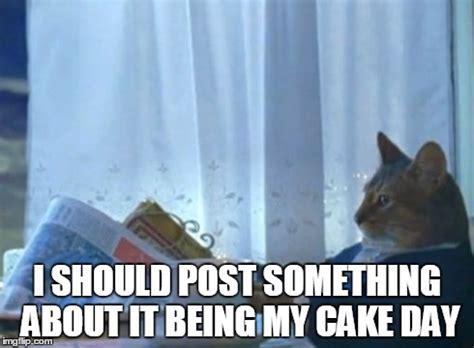 Cat Buy A Boat Meme - i should buy a boat cat meme imgflip