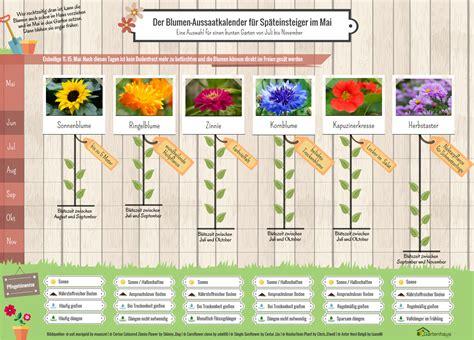 Welche Blumen Im Mai by Blumen S 228 En Im Mai Aussaatkalender F 252 R Sp 228 Teinsteiger
