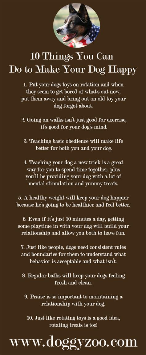 10 Things That Can Make You Happy During The Day by 10 Things You Can Do To Make Your Happy Doggyzoo