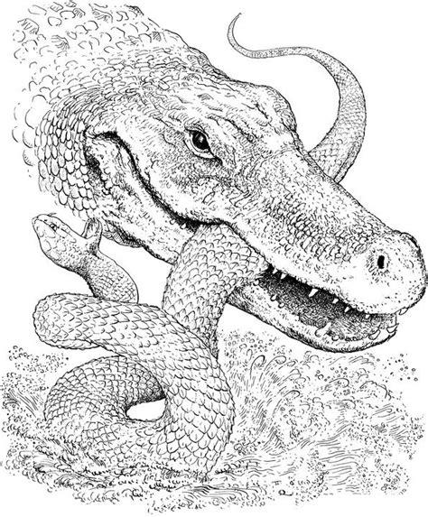 desenho de jacar 233 comendo cobra para colorir tudodesenhos