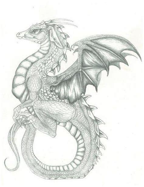 dragons den tattoo 94 best dragons images on celtic