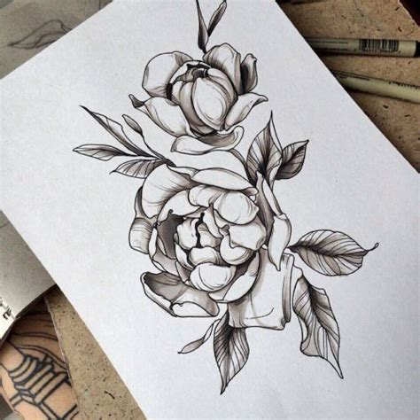 the 25 best ideas about peony drawing on pinterest