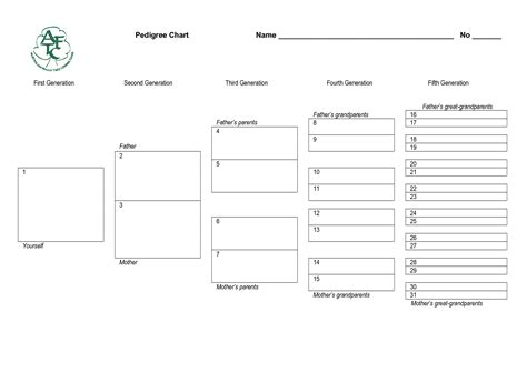free pedigree chart template 28 images blank family