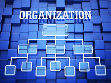 one organization royalty free organization chart pictures images and stock photos istock