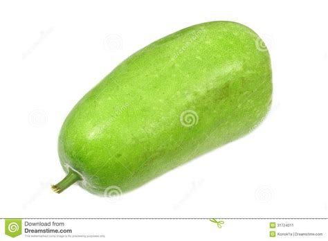 Wax Gourd Stock Image   Image: 31724011