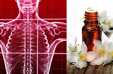 test kinesiologico fiori di bach test kinesiologico e floriterapia kinesiologia