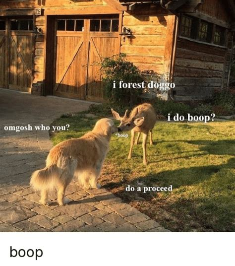 Boop Meme - 25 best memes about boop and doggo boop and doggo memes