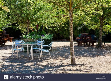 Patio Trees For Shade by Cafe Tables In Dappled Shade Of Trees On Gravel Patio In