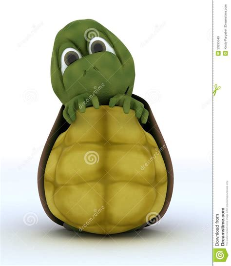 imagenes ocultas caricaturas caricatura de la tortuga que oculta en su shell