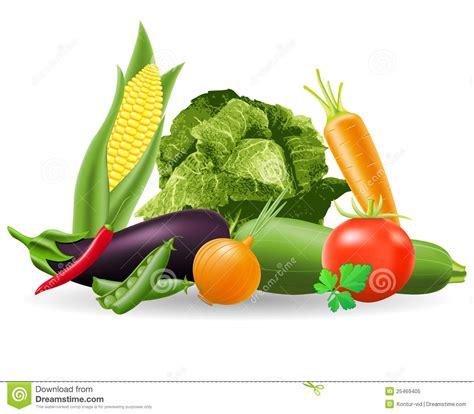 l m vegetables still of vegetables vector illustration stock vector