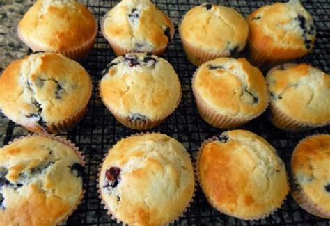 protein muffins recipe blueberry protein muffins recipe