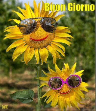 gif fiori buongiorno gif fiori bellissimeimmagini it