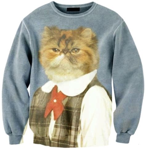 Sweater Cat 2 ye kitten and sweaters