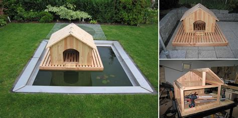 domestic house plans domestic duck house plans free
