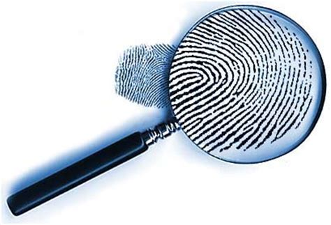 Print Criminal Record Instant Background Search Records Background Checks Free Florida