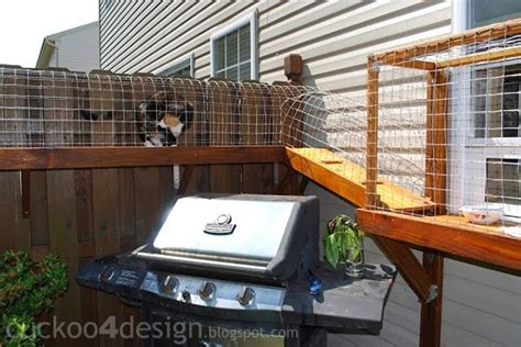 Easy DIY Cat Enclosure   Cuckoo4Design