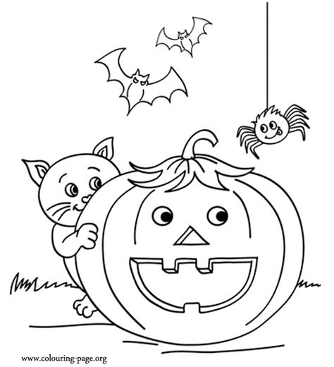 coloring pages for halloween spiders halloween spider coloring pages coloring home