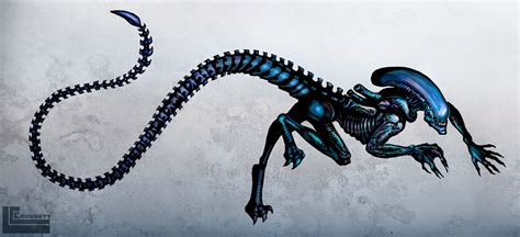 xenomorph tattoo design by havocschion drawing character and creature designs by lindsey crummett xenomorph