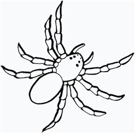 black spider coloring page black spider coloring pages of animals