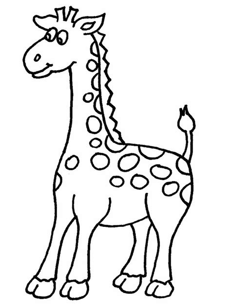 imagenes de jirafas para pintar animales para colorear imprimir jirafa imagenes de