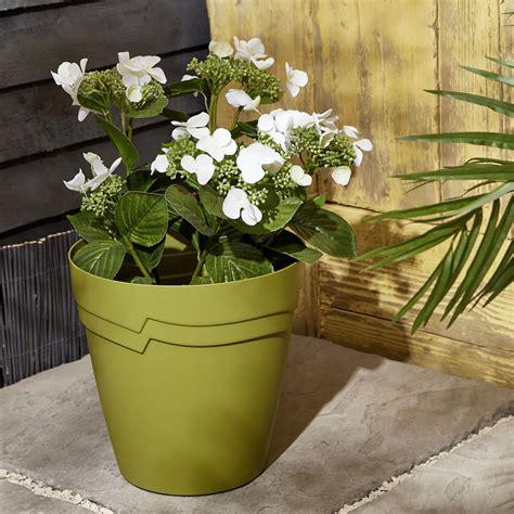 wilko olive green  watering planter cm wilko