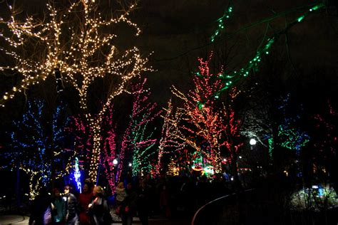 Lincoln Park Zoo Lights Festive Vibes By Kavita Tripoto Lincoln Park Zoo Festival Of Lights