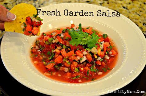 recipe for fresh garden salsa so simple but tastes amazing