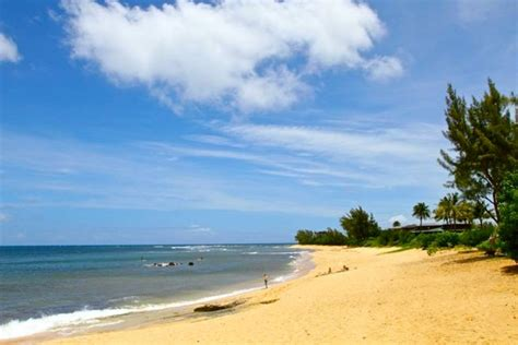 beautiful shore oahu 3 beds houses for rent in