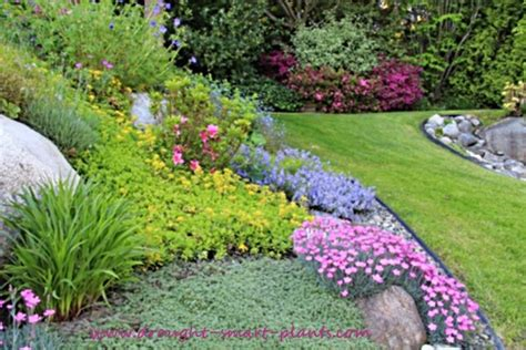 Buy Flower Garden Plans Let Me Help Design Your Drought Designing A Flower Garden Layout