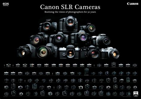 canon for photography what is the best for photography the 10 best dslrs