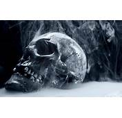 Scary Frozen Skull Wallpapers HD / Desktop And Mobile