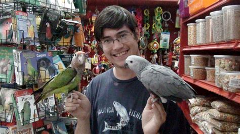 trained parrot blog