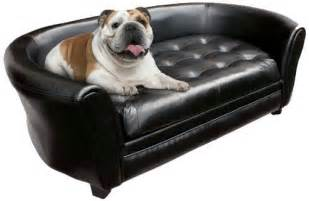 sofa for dogs 7 best images about sofas on home