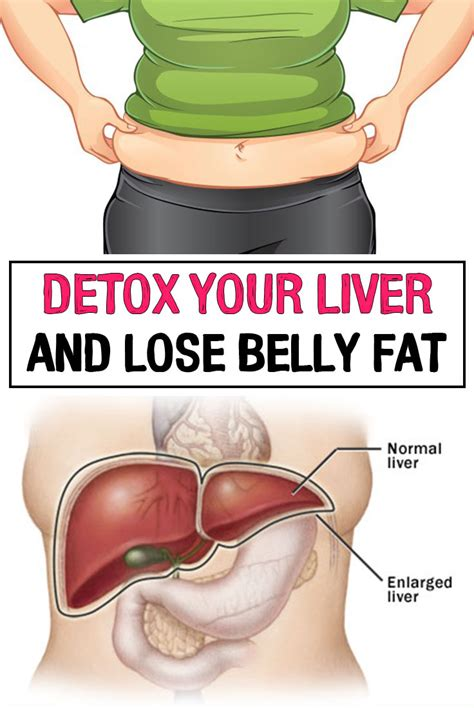 Detox To Lose Belly by Detox Your Liver And Lose Belly Iwomenhacks