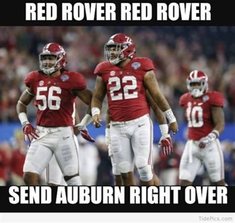 Alabama Auburn Memes - 324 best tide pics best alabama football pictures and