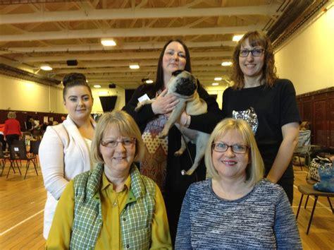 pug rescue scotland pdwra and scotland the pug welfare rescue association