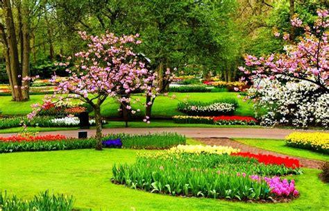 wallpaper taman bunga ros gambar taman bunga yang indah pernik dunia