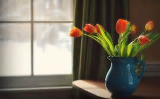 22 flower vase wallpapers backgrounds images pictures