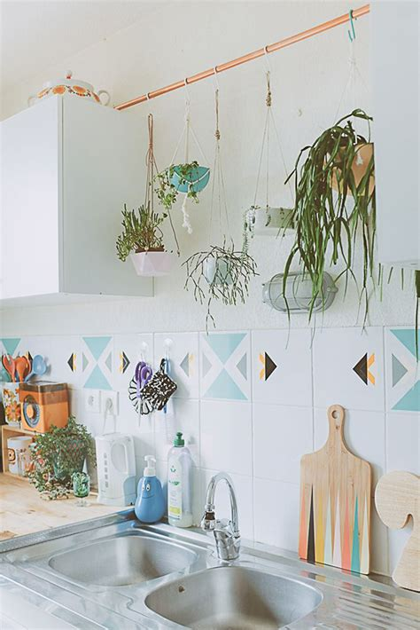 plants in kitchen 7 quick tips to update your kitchen by kimberly duran