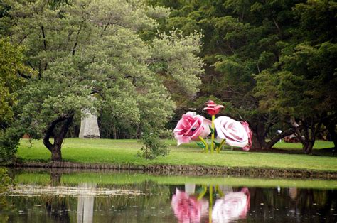 Fairchild Botanical Gardens Chapungu At Fairchild Tropical Botanical Gardens Miami Visions Of Travel