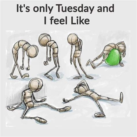 tuesday   feel  morning humor tuesday
