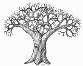 How To Draw A Tree Psikotes Tree Drawing Sketch Coloring Page