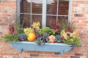 decorating window boxes for fall fall window box for the my office seasonal decorating