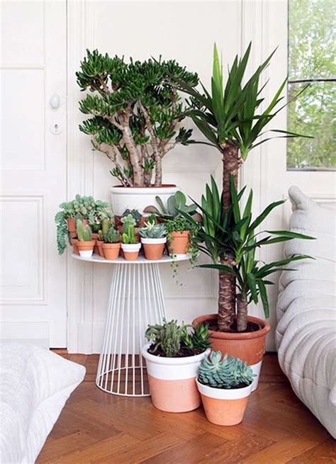 smart mini indoor garden ideas bored art