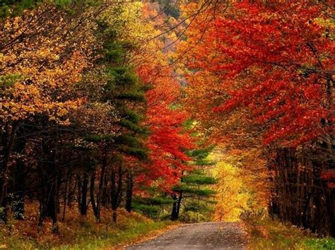1920x1080 autumn connecticut desktop pc 5 scenic drives in the catskills to take during fall